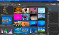Funkcje edycyjne Zoner Photo Studio dostępne są na belce widocznej z prawej strony okna programu.