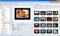 Ashampoo Photo Commander oferuje filtrowanie miniatur między innymi po typie i formacie pliku, ocenie oraz dacie wykonania zdjęcia.