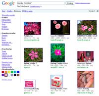 Jeżeli chcesz znaleźć zdjęcia o określonym kolorze, użyj zaawansowanych ustawień wyszukiwarki grafik.