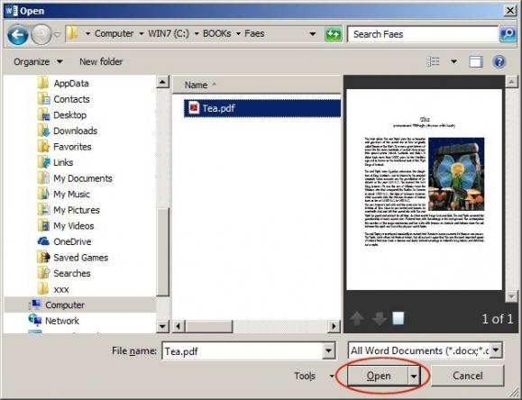 Aby otworzyć dokument PDF, wystarczy wskazać żądany plik i potwierdzić przyciskiem.